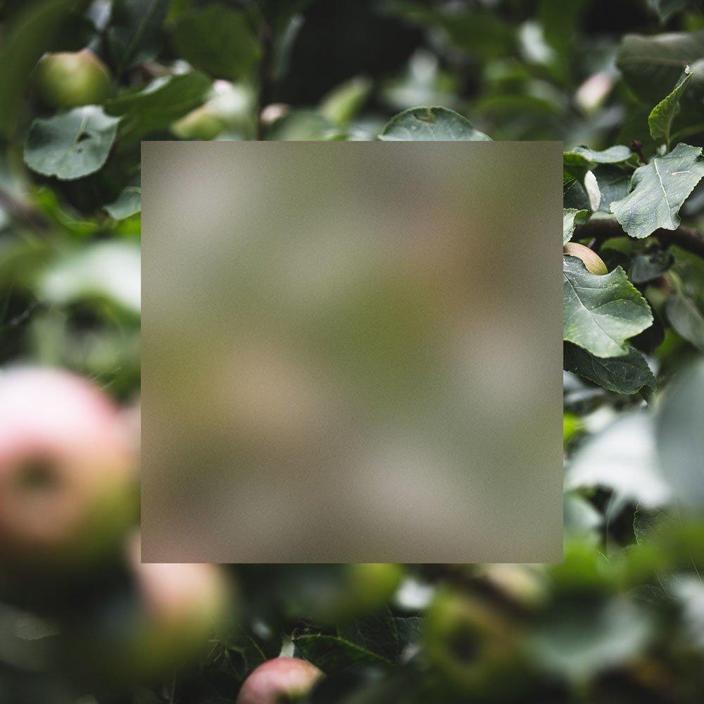 acrylic-apples-3