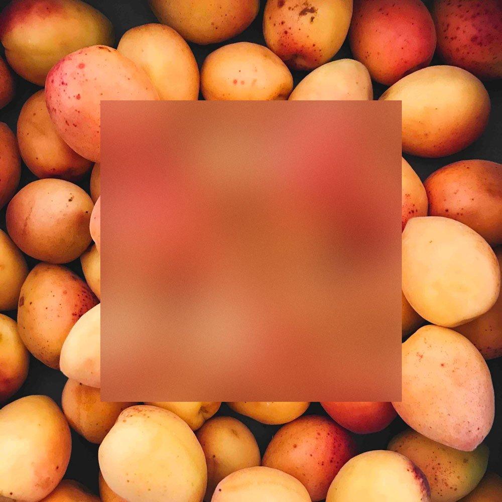 acrylic-apricots