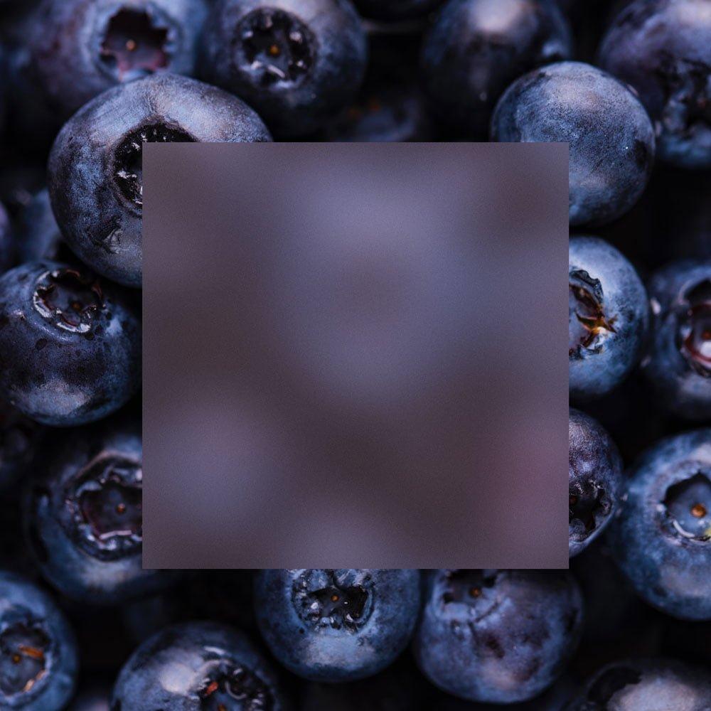acrylic-blueberries